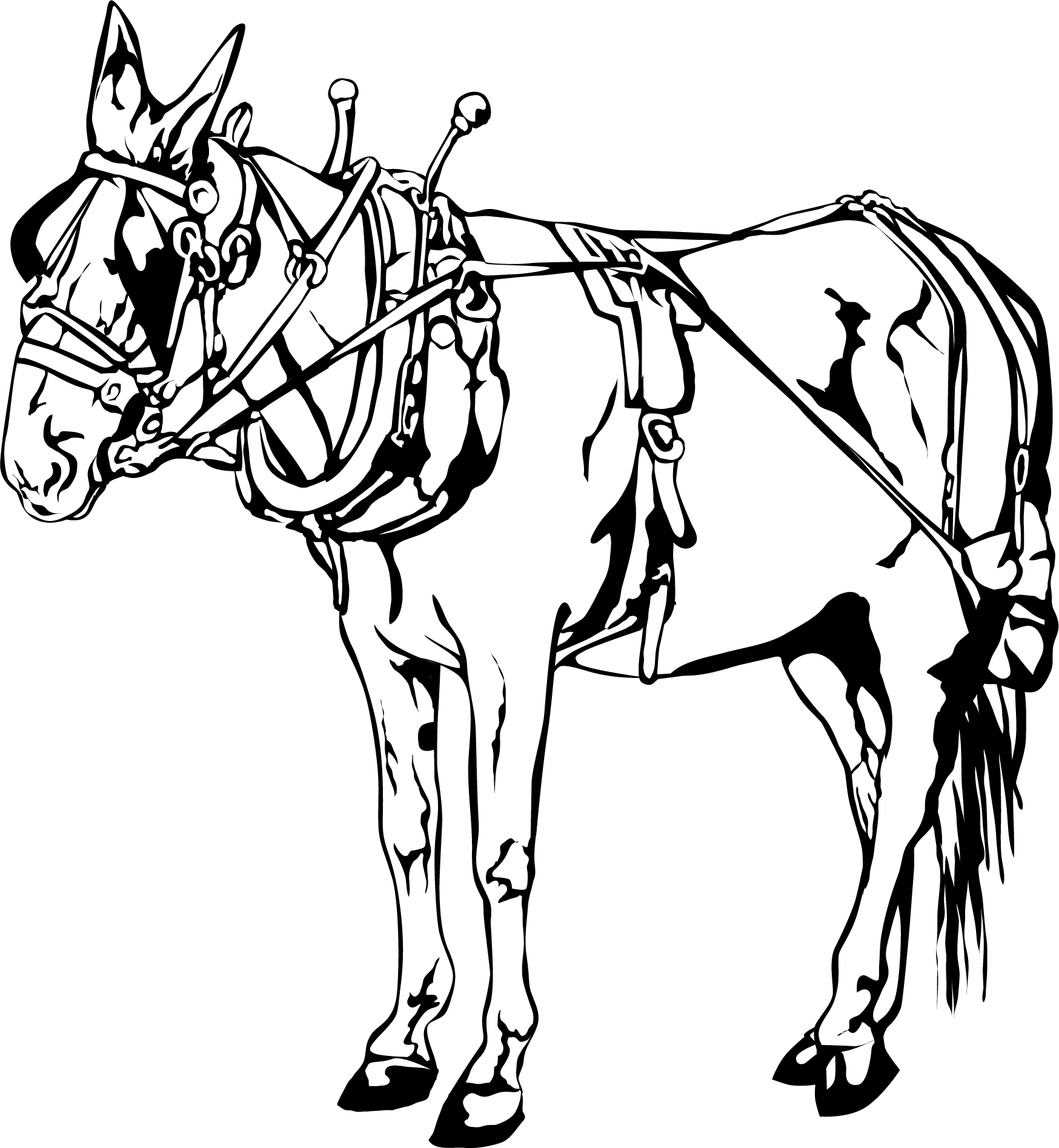 New Orleans Carriage Horse Vector Clip Art