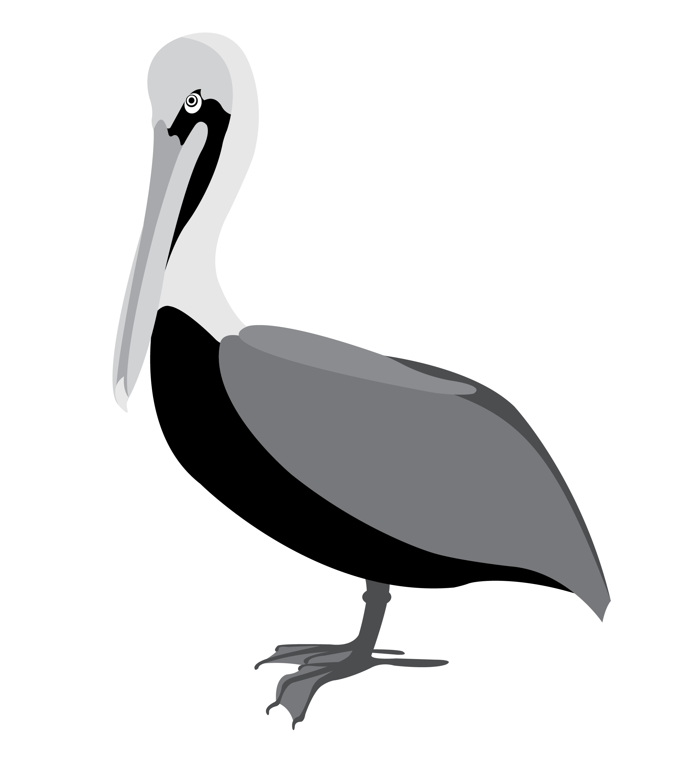 Black and White Pelican Vector Clip Art