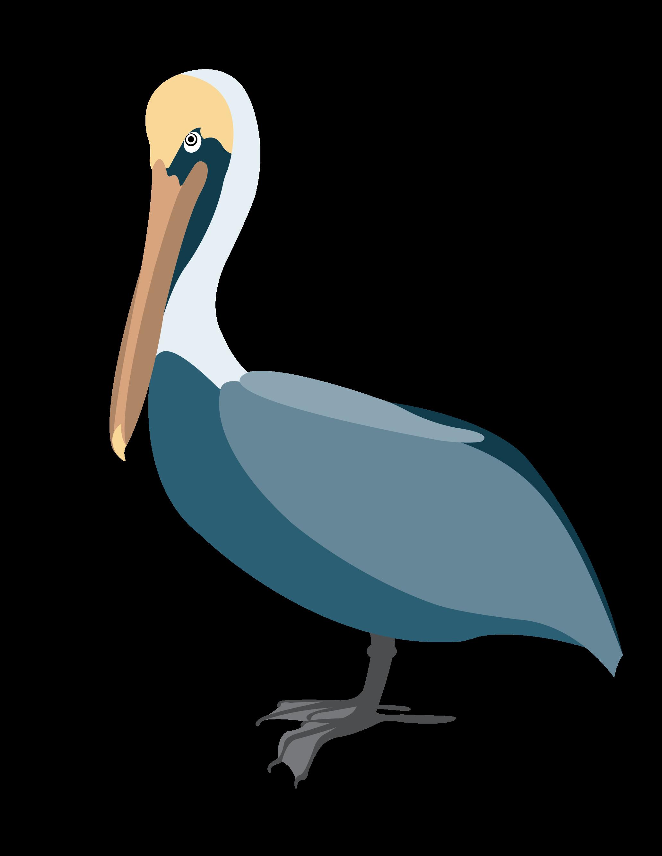 Pelican Vector Clip Art