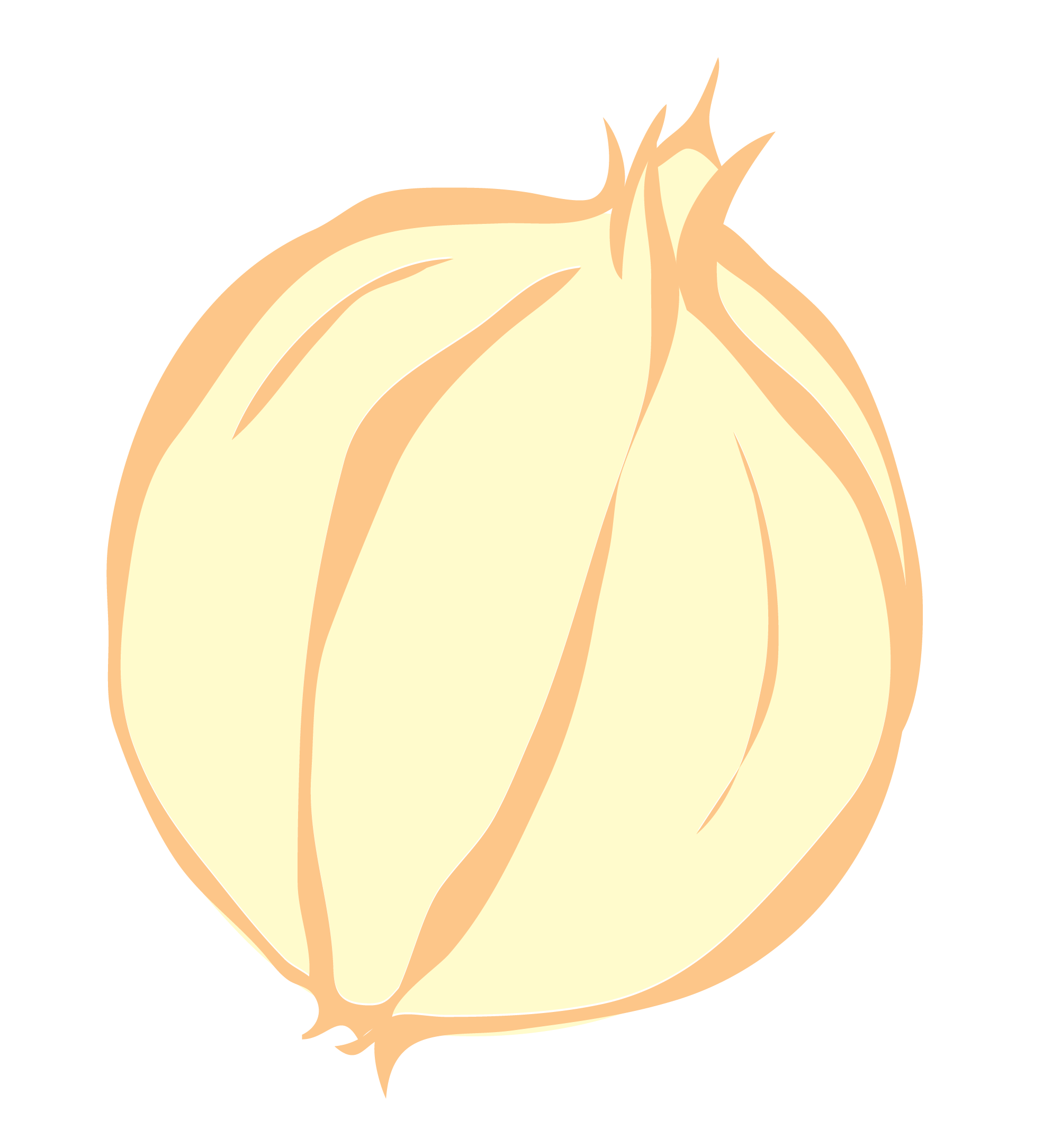 Onion Vector Clip Art